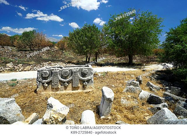 Aphrodisias' Shops. Ancient Greece. Asia Minor. Turkey