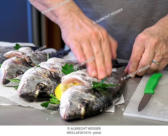 Preparing gilthead seabream