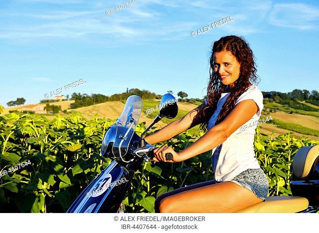 Woman on Vespa Primavera scooter in front of sunflower field, Sant'Amico, Morro d'Alba, Marche, Italy