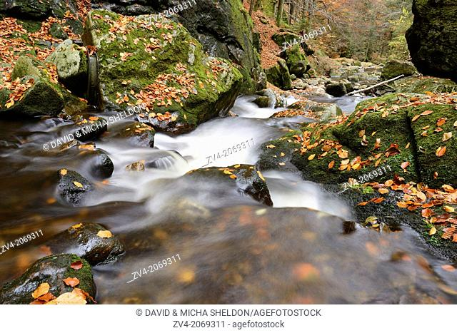 Landscape of a watercourse in autumn in the bavarian forest