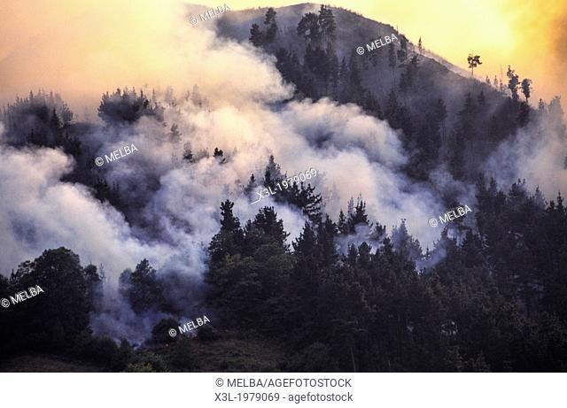 Fire in Arriondas. Asturias. Spain