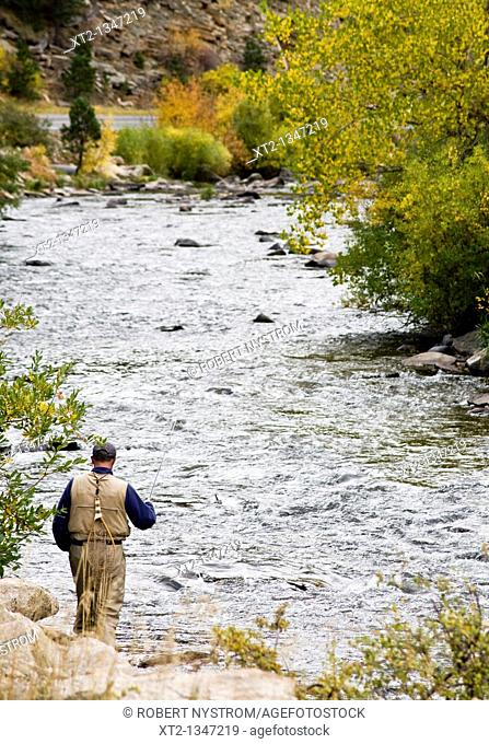 A man fly fishing on a river in the colorado mountains