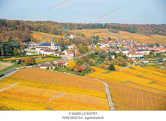 France, Champagne-Ardenne, the Marne, epernay, the vineyards of champagne, Unesco World Heritage Site