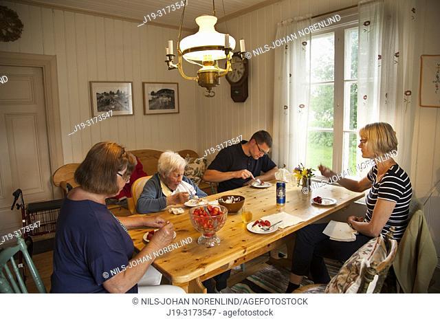 Summer cottage, eating strawberries, northern Sweden