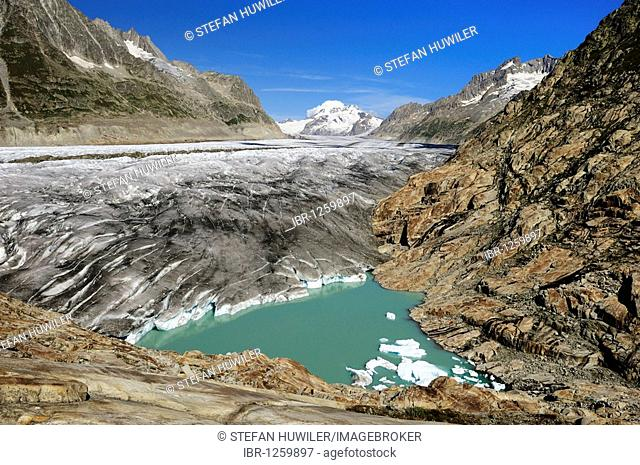 Great Aletschgletscher glacier with glacial lake in the foreground, Goms, Valais, Switzerland, Europe