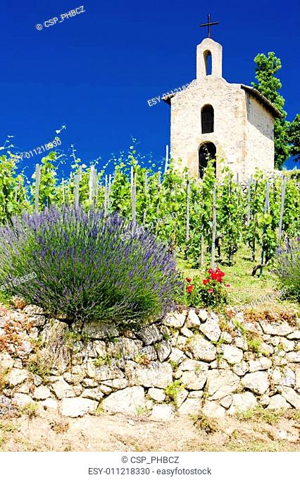 grand cru vineyard and Chapel of St. Christopher, L�Hermitage, Rh�ne-Alpes, France