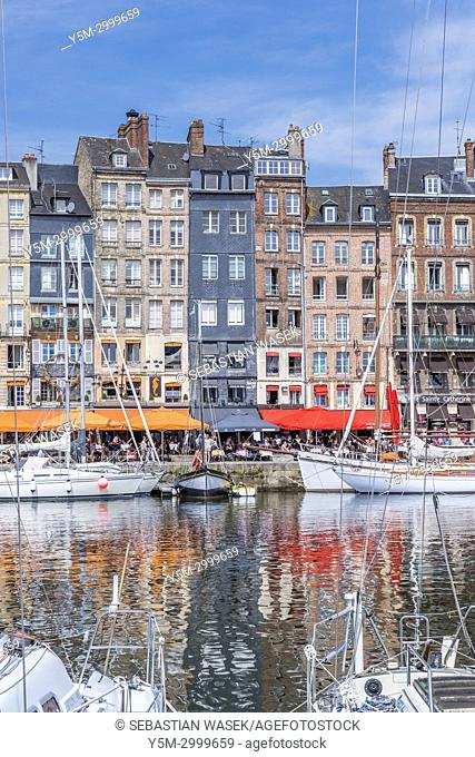 The old harbour Honfleur, Calvados, Normandy, France, Europe