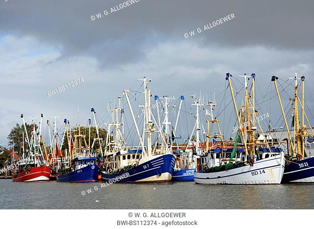 fishing boats in the harbor, Germany, Schleswig-Holstein, Buesum