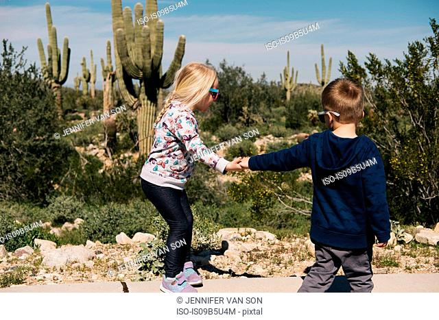 Boy and girl holding hands, Wadell, Arizona, USA