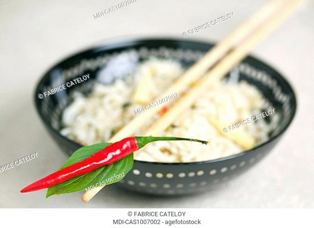 Pan-fried Chinese noodles, chili pepper, ears of sweet corn and basil