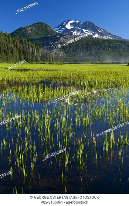 Sparks Lake to South Sister, Cascade Lakes National Scenic Byway, Deschutes National Forest, Oregon