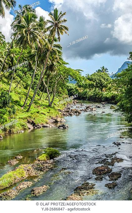 Rainforest river near Falefa Falls, Upolu Island, Samoa