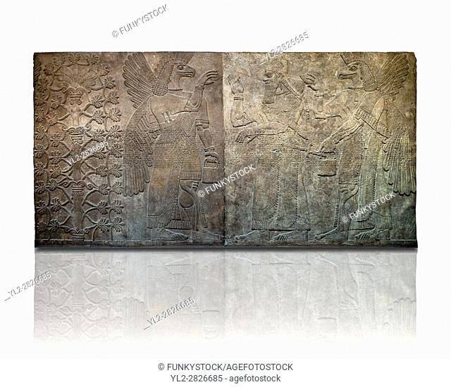 Assyrian relief sculpture panel of King Ashurnasirpal flanked by eagle headed protective spirits, from Nimrud, Iraq. 865-860 B