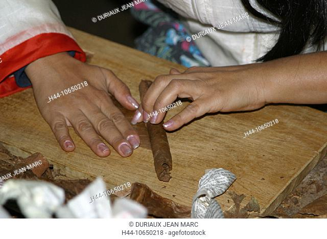 Woman hand rolling cigars Stock Photos and Images | age