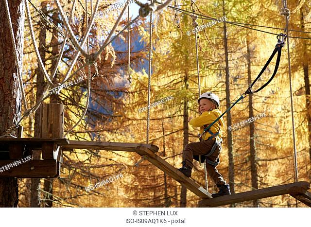 Young boy climbing in forest, attached to high line rope