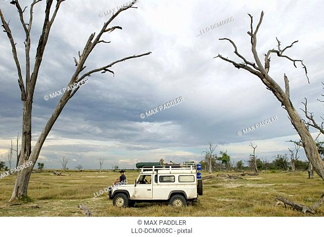 A 4X4 parked between dead trees on Dead Tree Island, Moremi Wildlife Reserve, Botswana