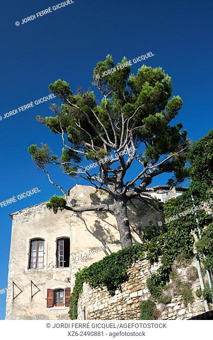 Bonnieux, Vaucluse, 84, Provence-Alpes-Côte d'Azur, France, Europe