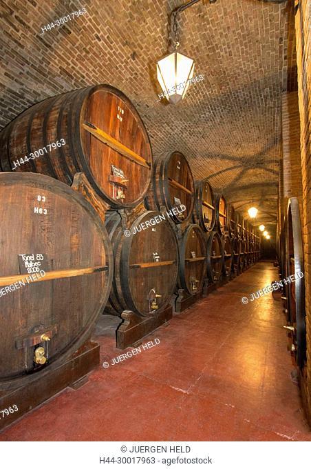Argentinia, mendoza, Big oak wine barrel in Bodega Weinert Wine museum