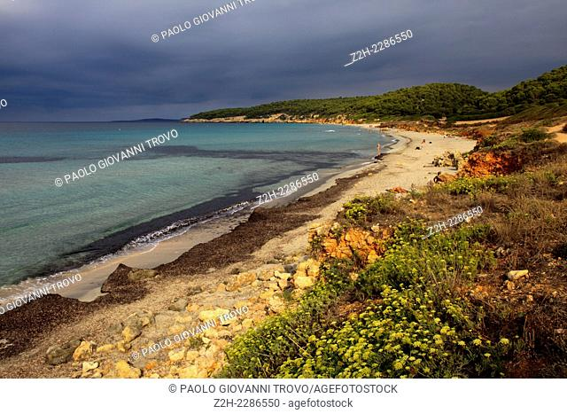Binigaus beach, Sant Tomas, Menorca, Balearic Islands, Spain