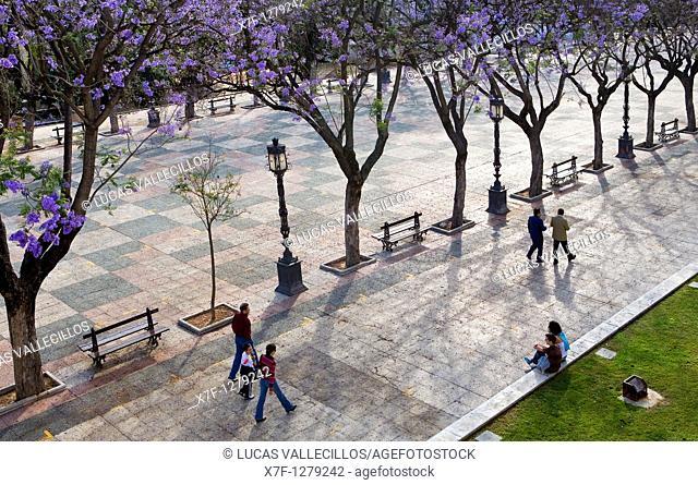 Jardines de la Alameda Vieja  Jerez de la Frontera  Cádiz province  Spain