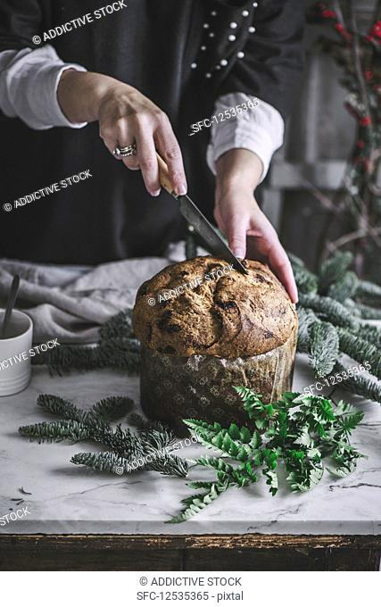 Crop person cutting fresh baked tasty Panettone on kitchen table