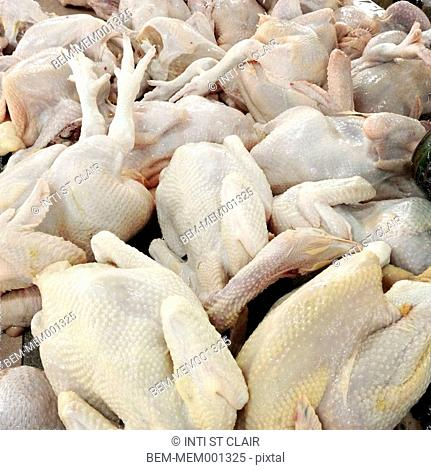 Pile of raw whole chickens