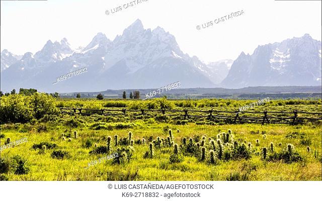 Landscape view of The Grand Teton Mountain Range. Wyoming. USA