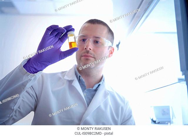 Scientist inspecting chemical sample in laboratory