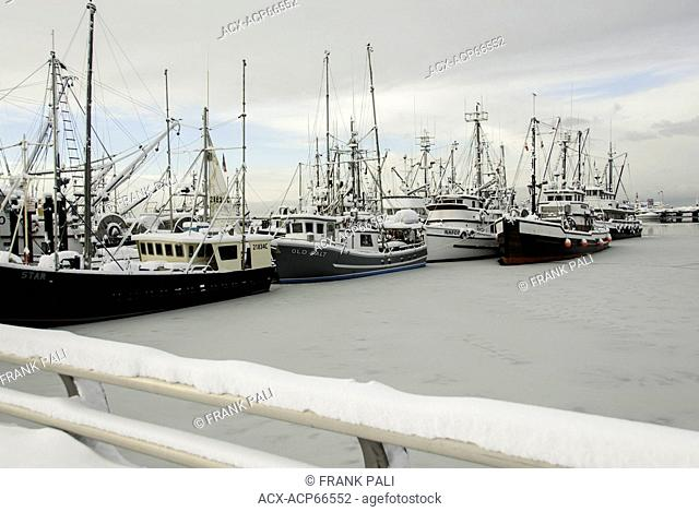 Fishing boats tied up for the winter freeze in Steveston Harbour, Steveston, Richmond, Metro Vancouver, British Columbia, Canada