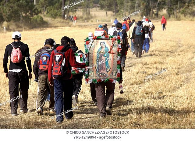 Pilgrims walk through a field as they travel to reach the Basilica of Guadalupe in Mexico City. Hundreds of thousands of Mexican pilgrims converged on the...