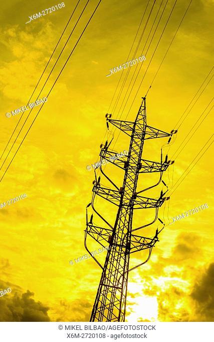 Electricity pylon. Cantabria, Spain, Europe