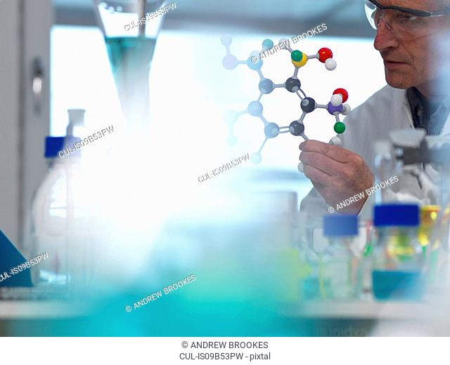 Researcher using a molecular model to understand a chemical formula in a laboratory