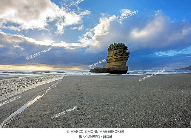 Rock formation, Punakaiki, Paparoa National Park, West Coast, South Island, New Zealand