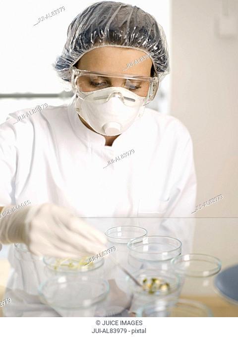 Scientist examining substance in Petri dish