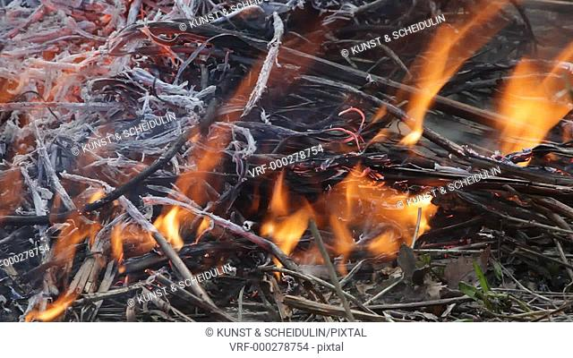 A bushfire is burning in a shrubland. Twigs and grasses are disintegrating in the flames. Noraström, Västernorrlands Län, Sweden