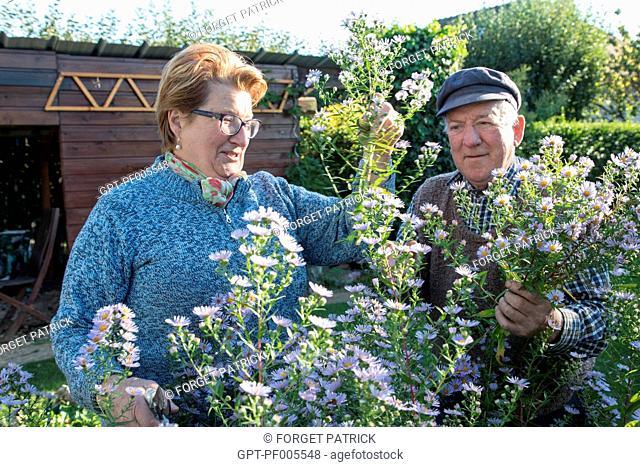 ELDERLY COUPLE IN THEIR GARDEN, TOWN OF VERNEUIL-SUR-AVRE (27), FRANCE