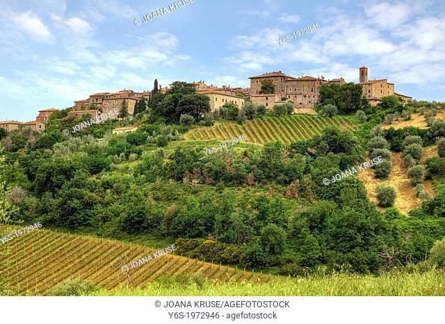 Castelnuovo dell'abate, Montalcino, Tuscany, Italy