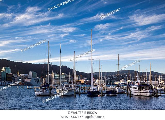 New Zealand, North Island, Wellington, skyline and waterfront buildings