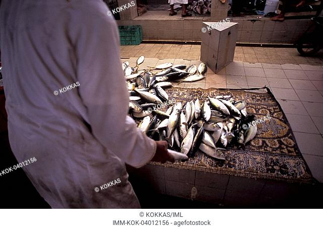 Mutrah, fish market, Muscat, Oman, Middle East