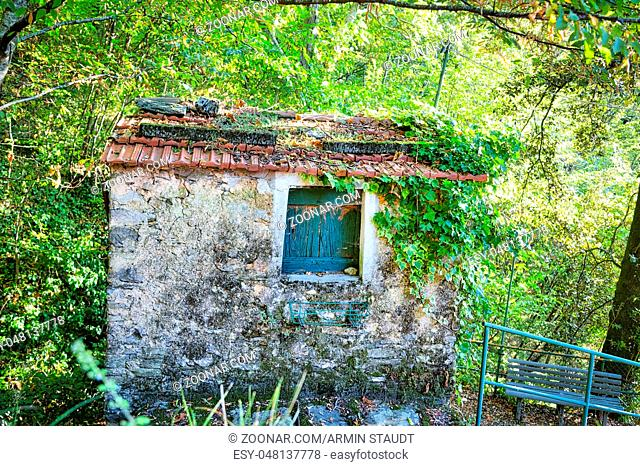 HDR shot of an abandoned overgrown cottage