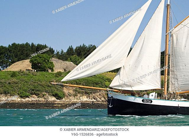 Tall ship Tecla sailing in front of a prehistoric mound  Bay of Morbihan, Brittany, France, Europe