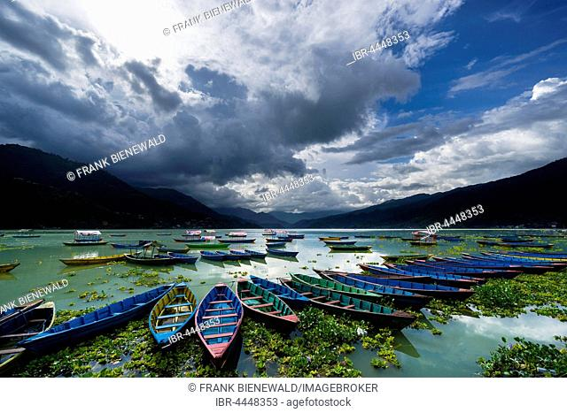Rowing boats are tight together at Phewa Lake, dark thunderstorm clouds are rising at the sky, Pokhara, Kaski District, Nepal