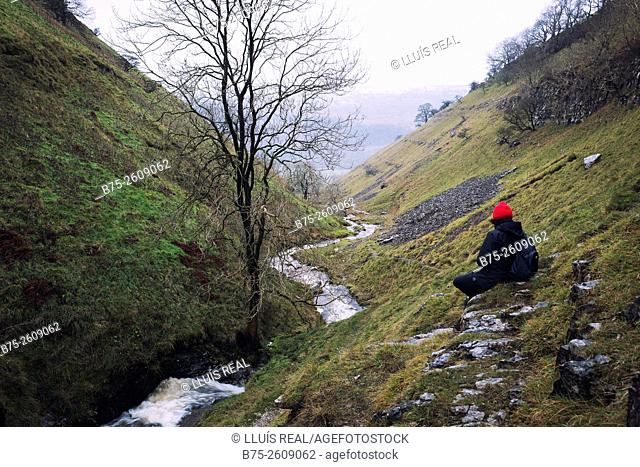 Hiker in a valley looking at a stream. Buckden, Upper Wharfedale, North Yorkshire, Yorshire Dales, Skipton, England, UK, Europe