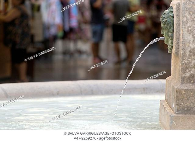 Ornamental fountain in the Plaza Redonda in Valencia, Spain, Europe