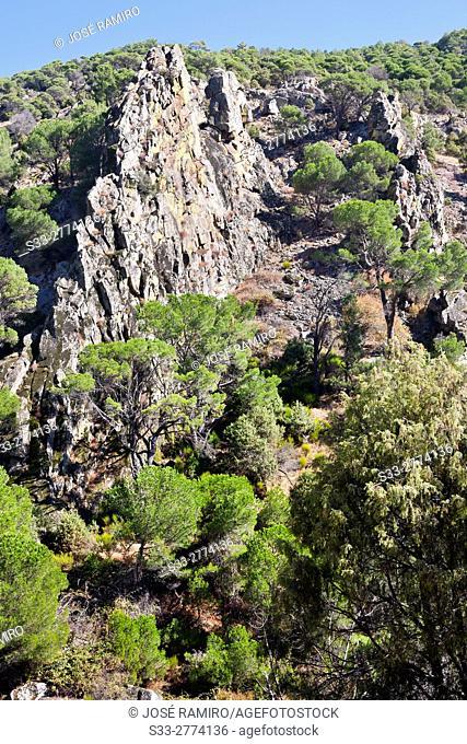 Cliffs in the Pizarra gorge in Cebreros. Avila. Castilla Leon. Spain. Europe