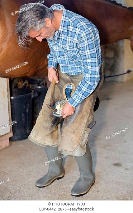 fitting the hoof