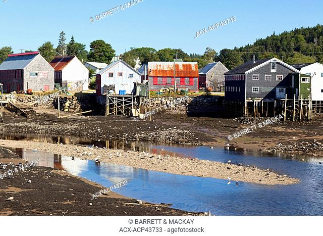 Low tide, Seal Cove, Grand Manan Island, Bay of Fundy, New Brunswick, Canada