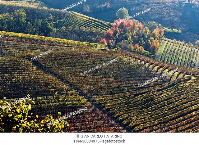 Italy, panorama of vineyards of Piedmont Langhe-Roero and Monferrato on the World Heritage List UNESCO. Landscape in autumn