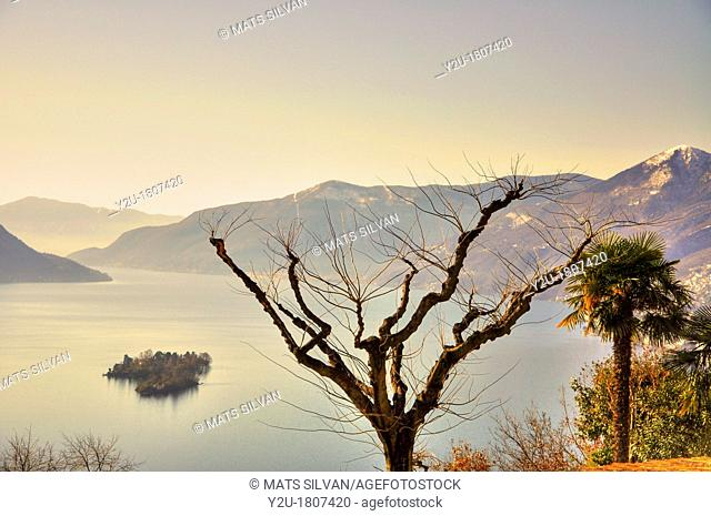 Alpine lake maggiore with brissago islands and palm trees and sky with low clouds