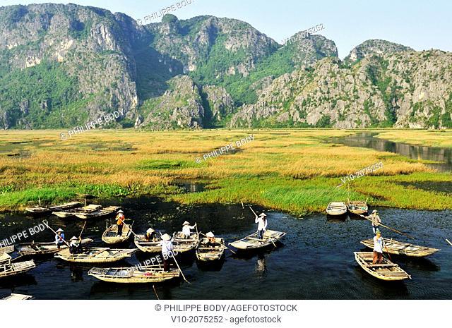 Vietnam, Ha Long bay on land, Van Long, karstic landscape, boatman